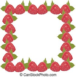 Frame raspberries, isolated vector