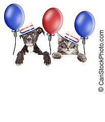 Kitten and Puppy American Voters - Puppy and kitten hanging...