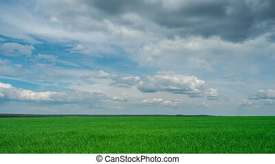 green field and cloudy sky beautiful clouds floating over green bright sky beautiful landscape, timelapse expressive freedom serenity sky beautiful clouds, bright juicy green grass