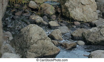 Toxic Liquid Flowing Between Stones - Toxic and dirty liquid...