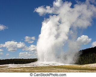 vecchio, fedele, Yellowstone, nazionale, parco