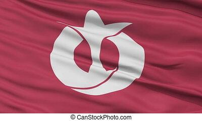 Aichi Prefecture Close Up Flag - Flag of Aichi Prefecture,...