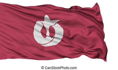 Aichi Prefecture Isolated Flag - Flag of Aichi Prefecture,...