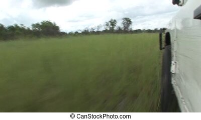 car driving wet fileld land Arfica safari - Africa wild...