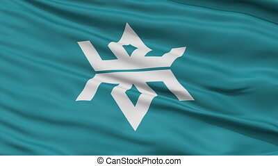 Iwate Prefecture Close Up Flag