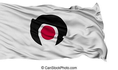 Kagoshima Prefecture Isolated Flag - Flag of Kagoshima...