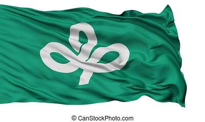 Miyagi Prefecture Isolated Flag - Flag of Miyagi Prefecture,...