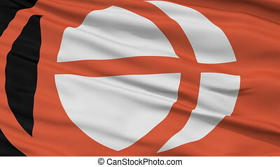 Nagano Prefecture Close Up Flag - Flag of Nagano Prefecture,...