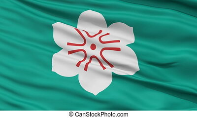 Saga Prefecture Close Up Flag - Flag of Saga Prefecture,...