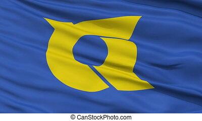Tokushima Prefecture Close Up Flag - Flag of Tokushima...
