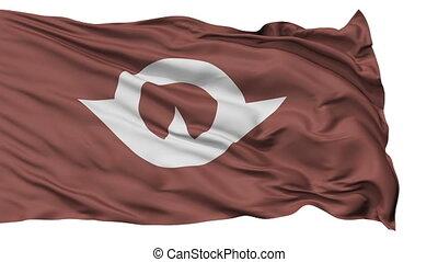 Yamaguchi Prefecture Isolated Flag - Flag of Yamaguchi...