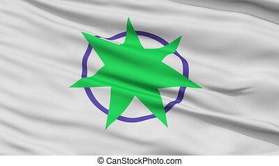 Aomori Capital City Close Up Flag - Aomori Capital City...