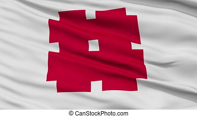 Gifu Capital City Close Up Flag - Gifu Capital City Flag,...