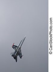 Jet fighter aircraft - A McDonnell Douglas FA-18 Hornet...