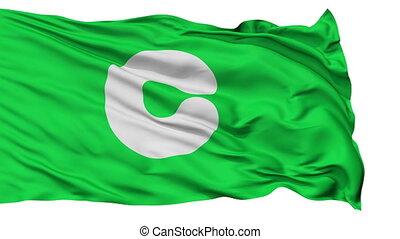 Kumamoto Capital City Isolated Flag - Kumamoto Capital City...