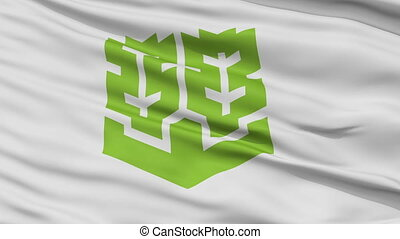 Matsuyama Capital City Flag, Ehime Prefecture of Japan,...
