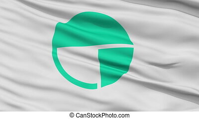 Nagano Capital City Close Up Flag - Nagano Capital City...