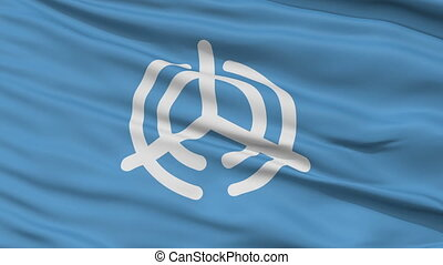 Oita Capital City Close Up Flag - Oita Capital City Flag,...