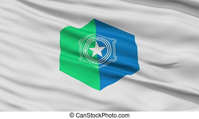 Sapporo Capital City Close Up Flag - Sapporo Capital City...