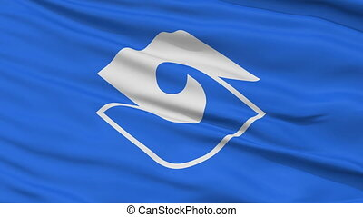 Shizuoka Capital City Close Up Flag - Shizuoka Capital City...