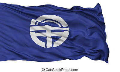 Tokushima Capital City Flag, Tokushima Prefecture of Japan,...
