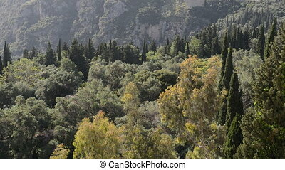 Panning mountains, cypress and olive trees in Corfu island,...