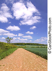 Mud track landscape - Tractor track landscape on a beautiful...