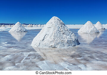 Salinas in Bolivia - Salt flats on Bolivian Altiplano