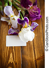 beautiful white with purple irises on a wooden table