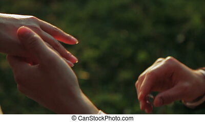 Guy Wears a Ring on The Finger of a Girl Close-Up of Hands -...