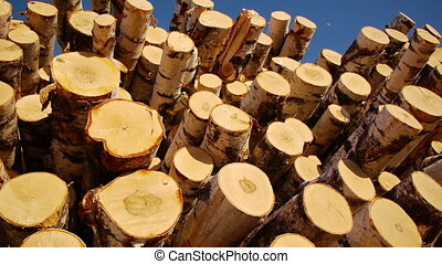 Stack of wood logs - Slider shot of stack of wood logs