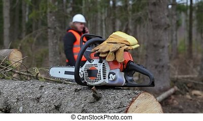 Chainsaw and gloves on tree in forest