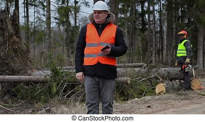 Forest Officer with tablet PC and worker with chainsaw