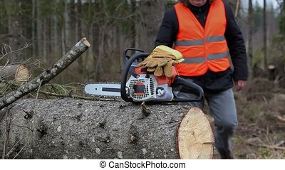 Lumberjack take chainsaw and gloves