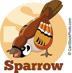 ABC Cartoon Sparrow - Vector image of the ABC Cartoon...