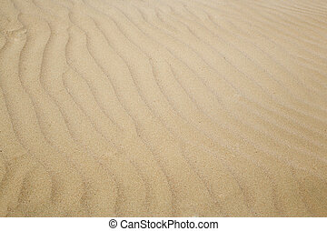 Sand dunes - Close-up photo of the sand dunes in arid area