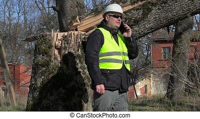 Worker with smart phone near fallen tree