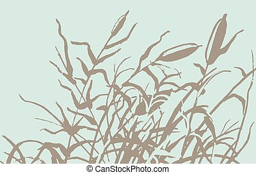 Reed vector illustration Gravure rush vector drawing