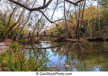 Wooden Bridge on Lake - View of a wooden bridge on a lake in...