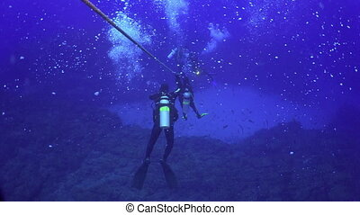 Divers plunge to a depth seabed along the ropes - Divers...
