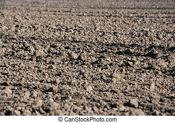 Plowed field in the spring