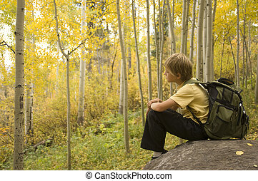 Aspen Serenity - Boy with backpack sitting in a tranquil...