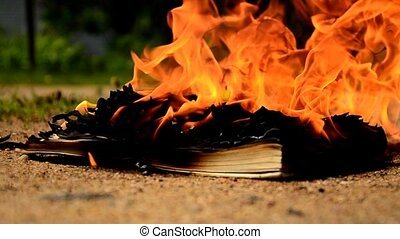 Book burning on the ground.
