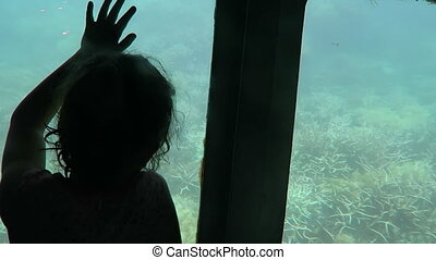 Child travel in Semi Submarine in coral sea great barrier...