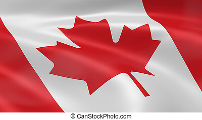 Canadian flag in the wind. Part of a series.
