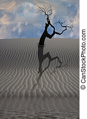 Water in desert with single tree