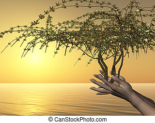 EMBRACE OF LIFE - Human hands hold the gift of life in tree...