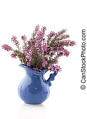 Heather in vase - Purple Heather in blue vase isolated over...