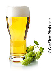 Pint of beer on table with hop cones isolated on white...