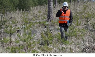 Forest officer talking on smart phone near pine young growth